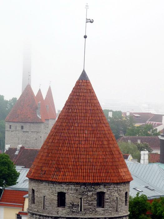 estonya020