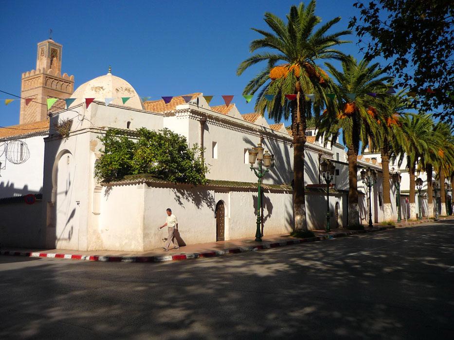 algeria104