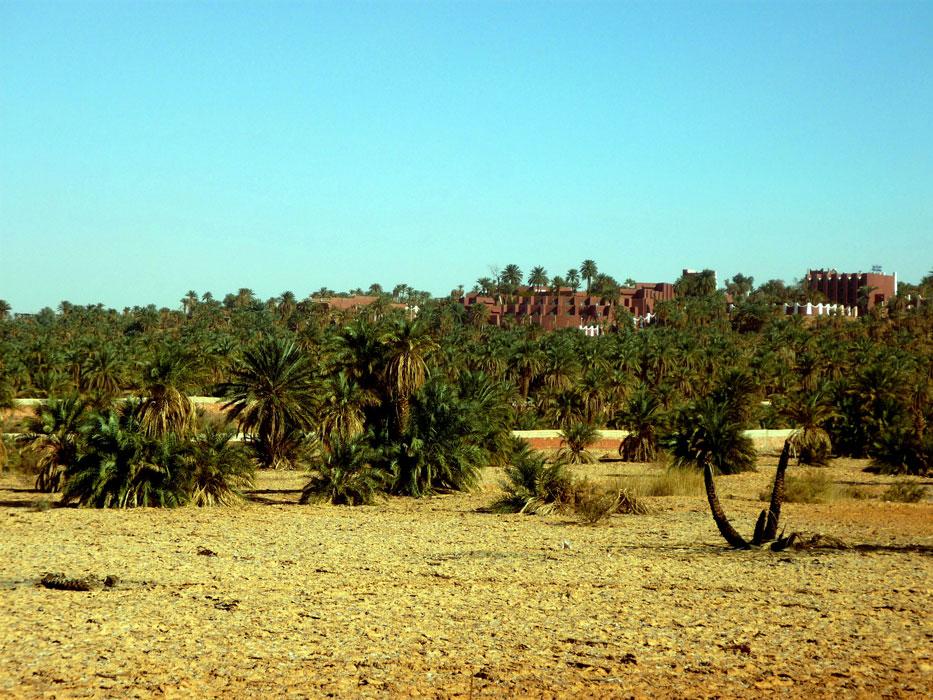 algeria305