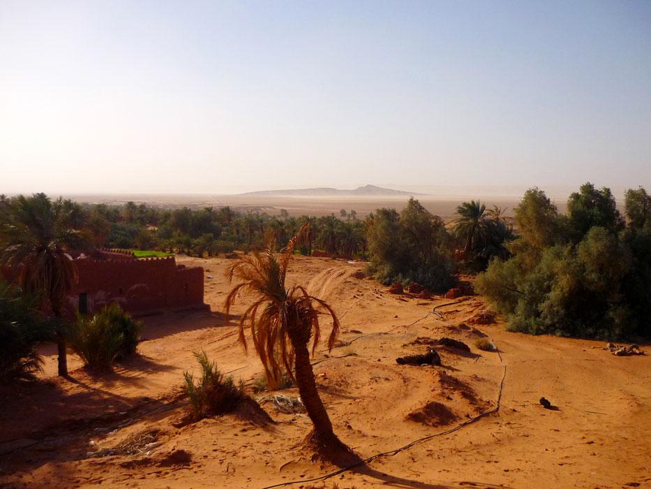 algeria320a