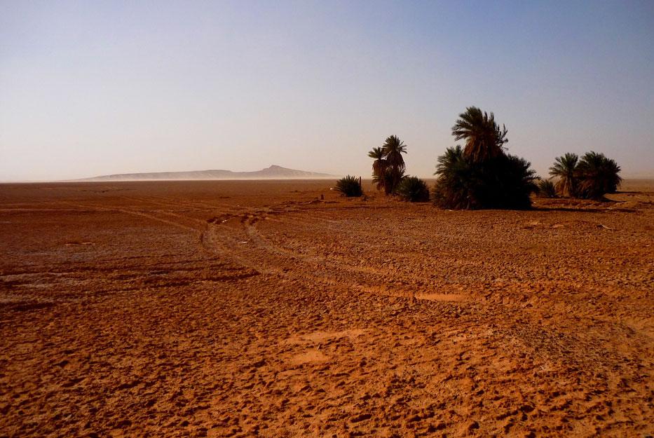 algeria321a