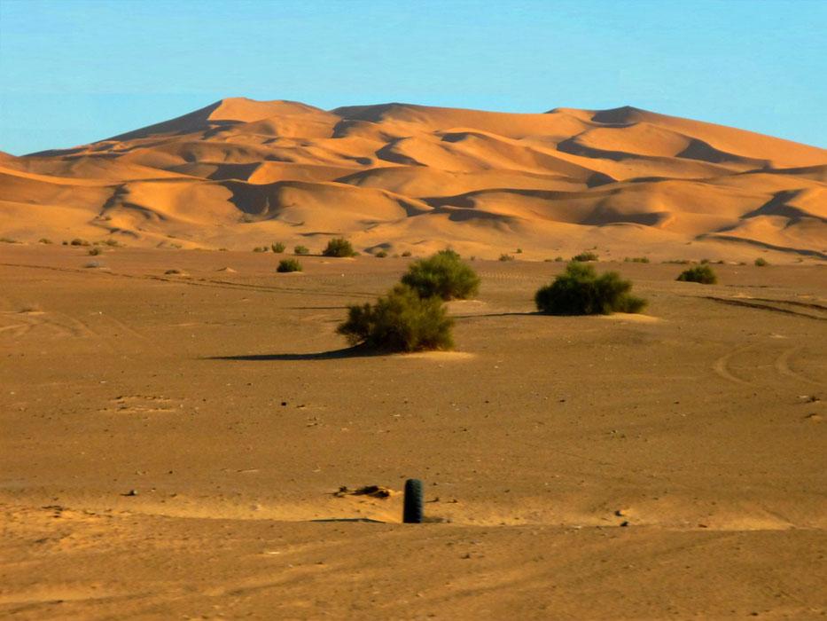 algeria324a
