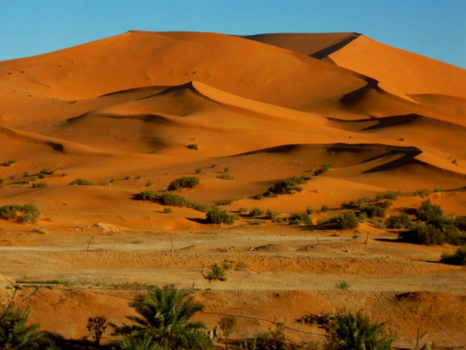 algeria341a