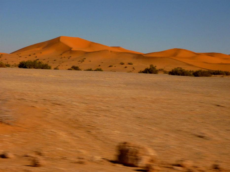 algeria343a