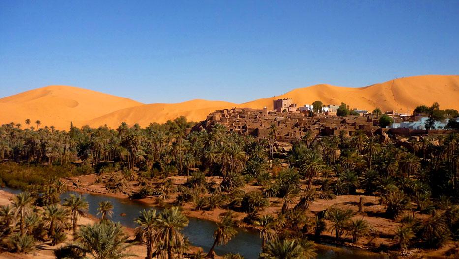 algeria360a